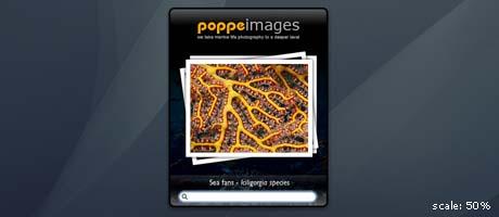 poppeimages widget